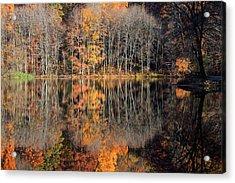 Autumns Art Acrylic Print by Karol Livote
