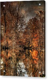 Autumn's End Acrylic Print by Paul Ward