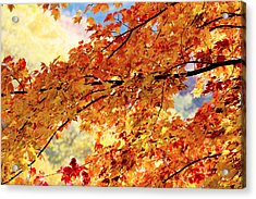 Autumns Gold Great Smoky Mountains Acrylic Print by Rich Franco