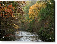 Autumn's Splendor Acrylic Print by TnBackroadsPhotos