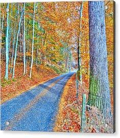 Autumns Way Bleu  Acrylic Print by John Kelly
