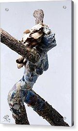 Avian Dreams Acrylic Print