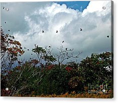 Acrylic Print featuring the photograph Away To The New Season by Christian Mattison