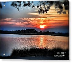 Awesome Sunset Acrylic Print by Claire Reilly