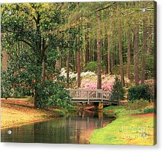 Azaleas And Footbridge Acrylic Print by Michael Hubrich and Photo Researchers