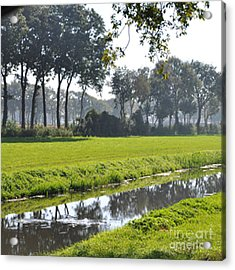 Baarschot Picture Acrylic Print by Nop Briex
