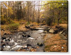 Babbling Brook In Autumn Acrylic Print