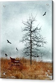 Baby Buggy By Tree With Nest And Birds Acrylic Print by Jill Battaglia