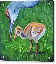 Acrylic Print featuring the painting Baby Crane's Lesson by AnnaJo Vahle