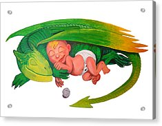 Baby Dragon Acrylic Print by Harm  Plat