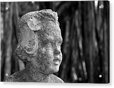 Baby Face Acrylic Print by David Lee Thompson
