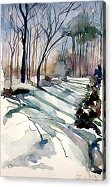 Backyard Snow Acrylic Print by Judith Scull