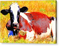 Bad Cow . 7d1279 Acrylic Print by Wingsdomain Art and Photography