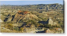 Bad Lands  Acrylic Print by Michael Peychich