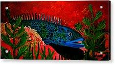 Badbluefish Acrylic Print