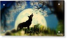 Badwolf Acrylic Print