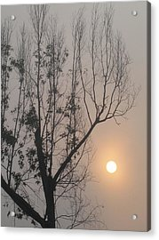 Acrylic Print featuring the photograph Balance by Lyn Calahorrano