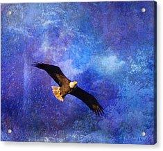 Bald Eagle Bringing A Fish Acrylic Print