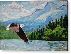 Bald Eagle Fishing Acrylic Print