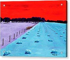 Baled Hay Acrylic Print by Randall Weidner