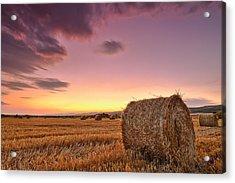 Bales At Twilight Acrylic Print by Evgeni Dinev