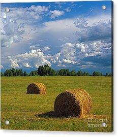 Bales Of Hay Acrylic Print by Elena Filatova