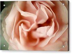 Ballerina Pink Acrylic Print by Claudia Smaletz