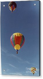 Balloons Trio Acrylic Print by Stacey Grant