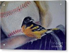 Baltimore Orioles Acrylic Print by AE Hansen