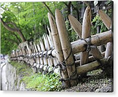 Bamboo And String Acrylic Print by James Knights