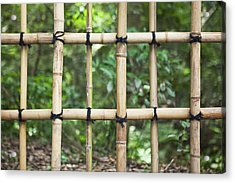 Bamboo Fence Detail Meiji Jingu Shrine Acrylic Print by Bryan Mullennix