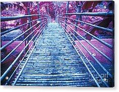 Bamboo Foot Bridge Acrylic Print by Will and Deni McIntyre