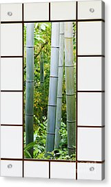Bamboo Forest Through A Rice Paper Window Acrylic Print by Jeremy Woodhouse