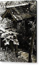 Bamboo Garden -2 Acrylic Print by Alan Hausenflock