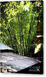 Bamboo Shade Acrylic Print
