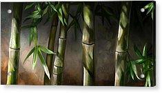 Bamboo Stalks Acrylic Print by Steve Goad