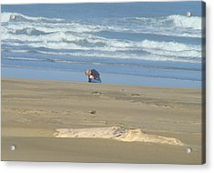 Bandon Oregon Beach Comber Prints Ocean Coastal Acrylic Print by Baslee Troutman