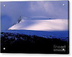 Banff National Park 2 Acrylic Print by Terry Elniski