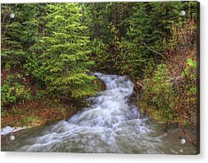 Banff Spring Creek Flow Acrylic Print by Sam Amato
