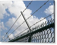 Barbed Wire Acrylic Print by Blink Images