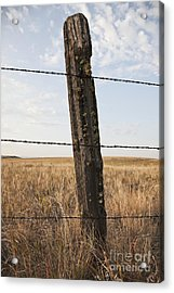 Barbed Wire Fencing And Wooden Post Acrylic Print by Jetta Productions, Inc