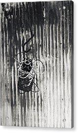 Barbwire On Hook Acrylic Print
