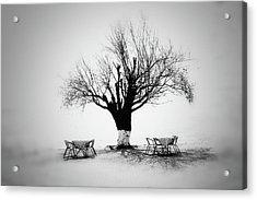 Bare Tree Acrylic Print by YongJun Qin