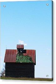 Barn-12 Acrylic Print by Todd Sherlock