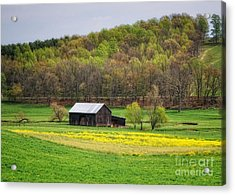Barn In The Hollar Acrylic Print by Pamela Baker