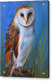 Acrylic Print featuring the painting Barn Owl by Lynn Hughes