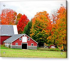 Barn Red Acrylic Print