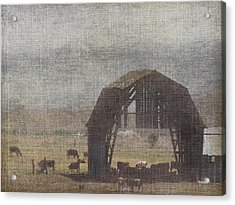 Barn Remnants Acrylic Print by Cindy Wright