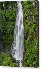Barr Creek Falls Acrylic Print by Greg Nyquist