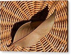 Basket Of Brown Acrylic Print
